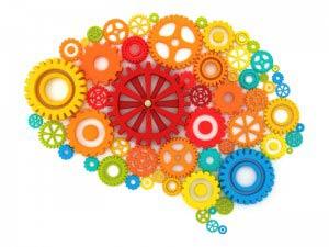 Brains gears