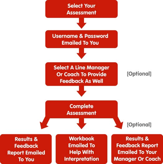 MTD Sales Insight Process