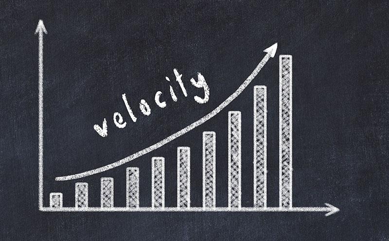 velocity graphic grow banner
